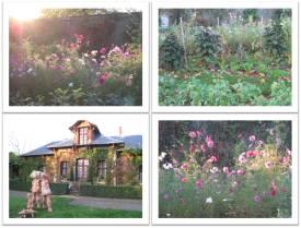 jardin-de-bagatelle_3