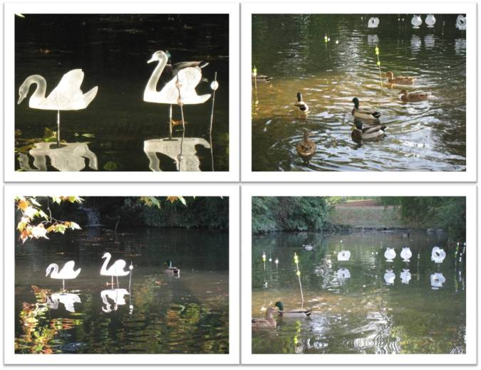 mare-aux-canards_2