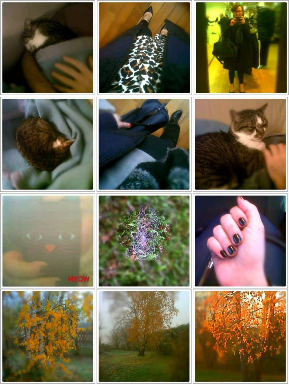 Dans mon BlackBerry 24