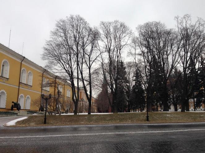 Les jardins du Kremlin sous la neige